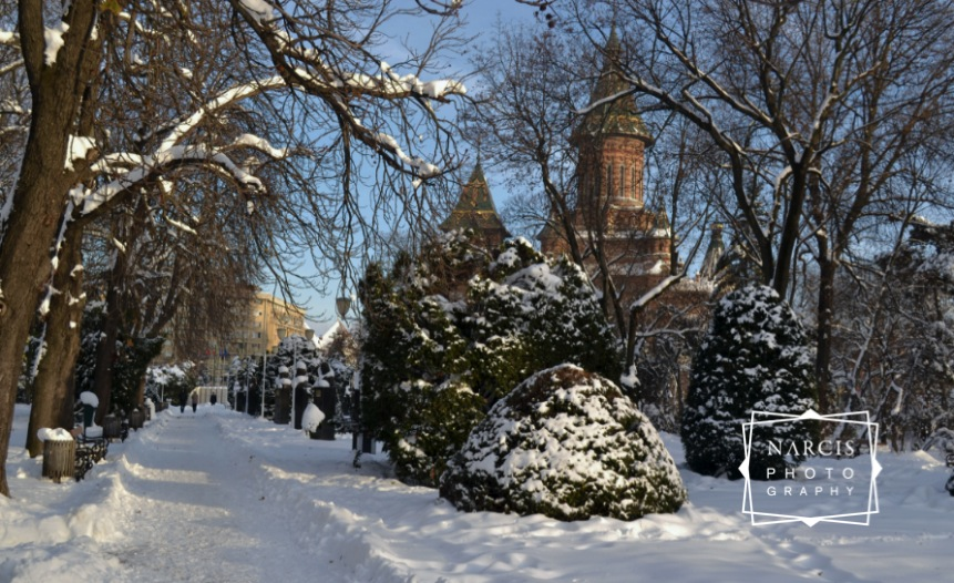 Timisoara_under-Snow-by-Narcis_Lupou-2016-12-26 at 11_Fotor-1