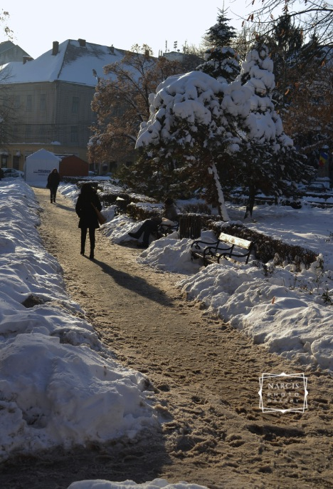 Timisoara_under-Snow-by-Narcis_Lupou-2016-12-26 at 11_Fotor-2