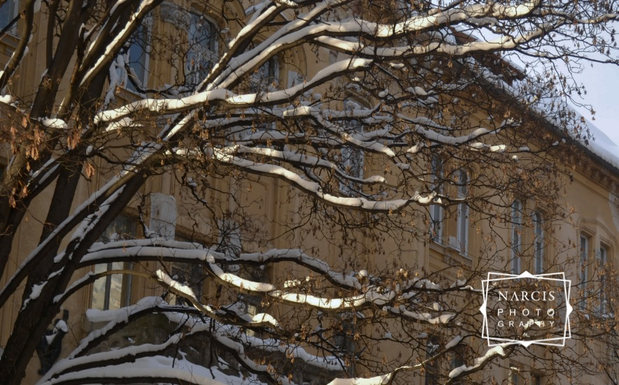 Timisoara_under-Snow-by-Narcis_Lupou-2016-12-26 at 11_Fotor-311