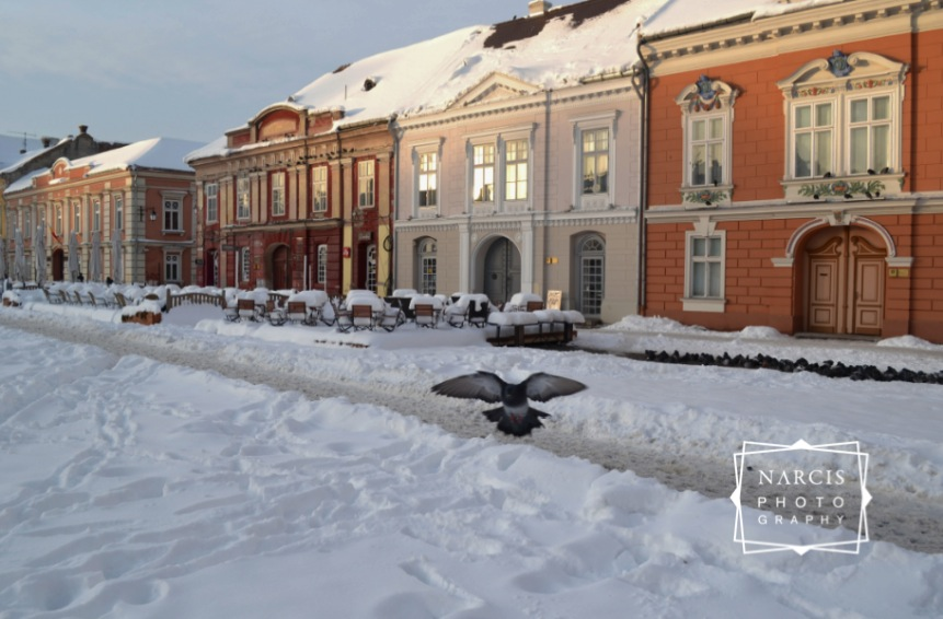 Timisoara_under-Snow-by-Narcis_Lupou-2016-12-26 at 11_Fotor-743