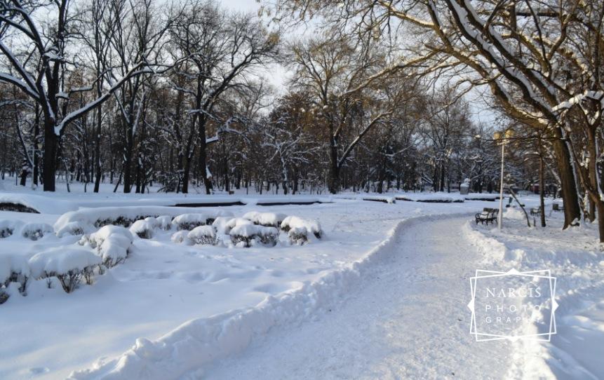 Timisoara_under-Snow-by-Narcis_Lupou-2016-2