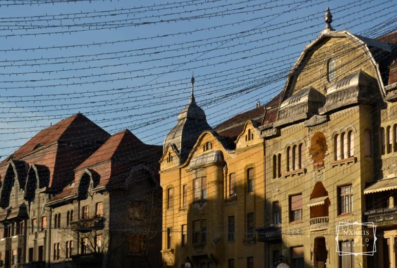 winterolidays-in-transylvania-35
