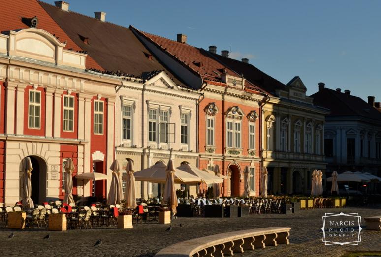 winterolidays-in-transylvania-37