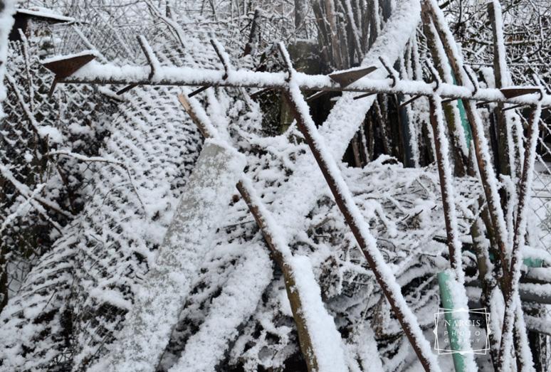 winterolidays-in-transylvania-8
